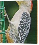 Woodpecker 106 Wood Print