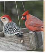 Woodpecker And Cardinal Wood Print by John Kunze