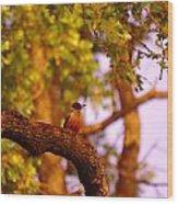 Woodpeckers Of Fort Simcoe Wood Print