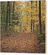 Woods 2 Wood Print