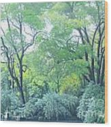 Woods Beside The Pond Wood Print
