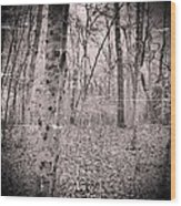 Woods Darkly Wood Print