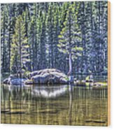 Woods Lake 1 Wood Print