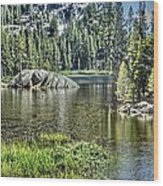 Woods Lake 2 Wood Print