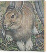 Woods Rabbit Wood Print