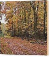 Woods Walk Wood Print