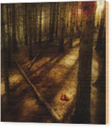 Woods With Pine Cones Wood Print by Meirion Matthias