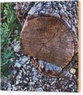 Woodscape 2009 Wood Print