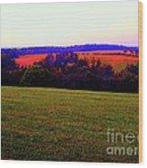 Woodstock - Farm - Yasgurs Wood Print