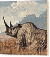 Woolly Rhino And A Marmot Wood Print