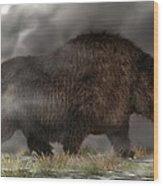 Woolly Rhinoceros Wood Print