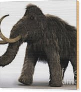 Wooly Mammoth Wood Print
