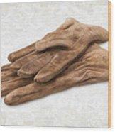 Work Gloves Wood Print by Danny Smythe