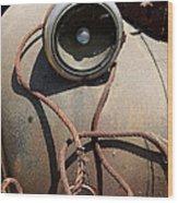 Wrapped Head Lamp Wood Print