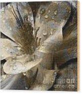 Wren Wood Print by Yanni Theodorou