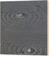 Wrightsville Beach Bubbles Wood Print