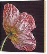 Wrinkled Rose Wood Print