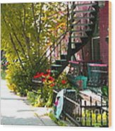 Wrought Iron Fence Balcony And Staircases Verdun Stairs Summer Scenes Carole Spandau  Wood Print
