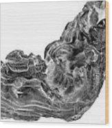 wudu 2 VIII Wood Print