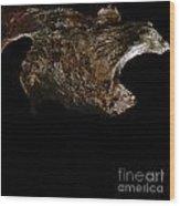 wudu 2 XIII Wood Print