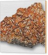 Wulfenite Mineral Wood Print