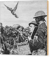 Wwi Releasing British Carrier Pigeon Wood Print