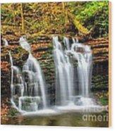Wyandot Falls Ricketts Glen Wood Print