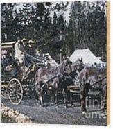 Wylie Coach Yellowstone National Park Wood Print