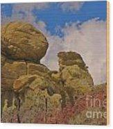 Wyoming Badlands Rock Detail Two Wood Print