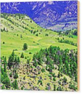 Wyoming Hillside Wood Print