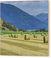 Wyoming Mountain Hay Farm Wood Print