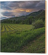 Wyoming Pastures Wood Print