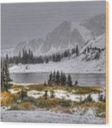 Wyoming's Medicine Bow National Forest Wood Print