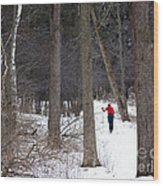 X-country Mendon Ponds Wood Print