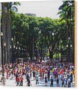 Xuxa's Birthday Celebration - Sao Paulo Wood Print