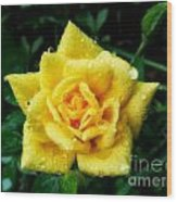 Y-rose Wood Print