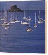 Yachts Moored On The Caribbean Sea Near Wood Print
