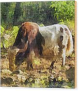 Yak Having A Snack Wood Print