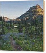 Yakima Peak At Sunrise Wood Print