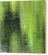Yamhill River Abstract 24831 Wood Print
