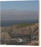 Yaquina Head Lighthouse-newport Wood Print