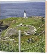 Yaquina Lighthouse From Salal Hill Trail  Wood Print