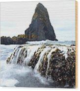 Yaquina Waves Wood Print by Sheldon Blackwell
