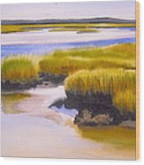 Yarmouthport Marsh Wood Print
