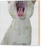Yawning Cat Wood Print