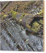 Ye Olde Mossy Log Wood Print