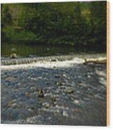 Ye Olde River Wye Wood Print