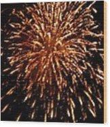 Year 2000 Wood Print
