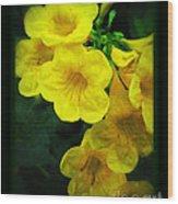Yellow - Amarillo - Jaune Wood Print