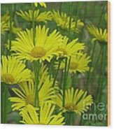 Yellow And Green Wood Print